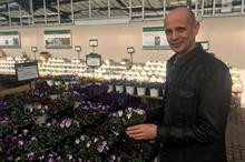 Bedding grower WD Smith to trial 560 pansy and viola varieties